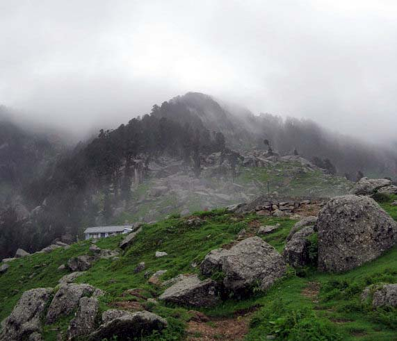 Triund Trek Kangra Himachal Pradesh
